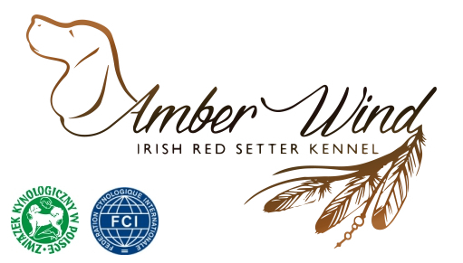 Amber Wind